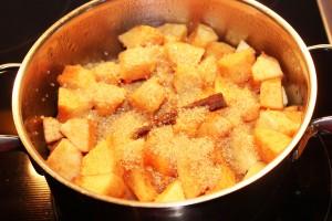 Apfel-Quitten-Torte_4592_1