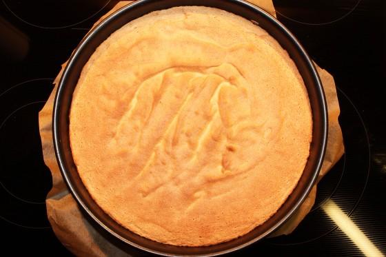 Quark-Mandarinen Torte_4879_b.1
