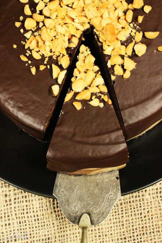 Chocolate-Peanutbutter Cheesecake_0057-f
