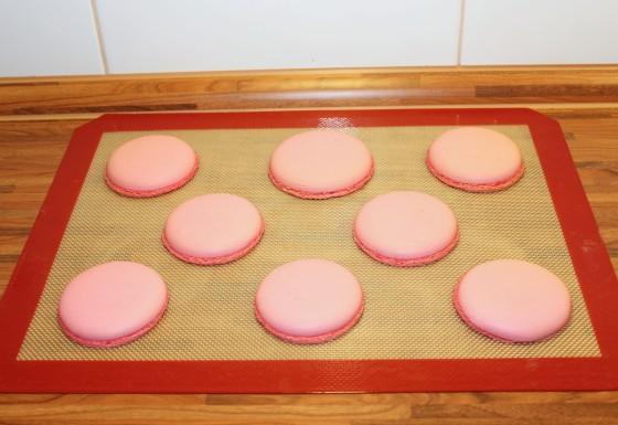 Himbeer-Pistazien Macarons_1090-1