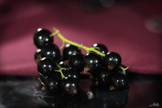Johannisbeer-Mascarpone Torte 11a