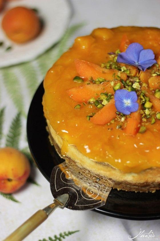 Pistaziencheesecake mit Aprikosen 7