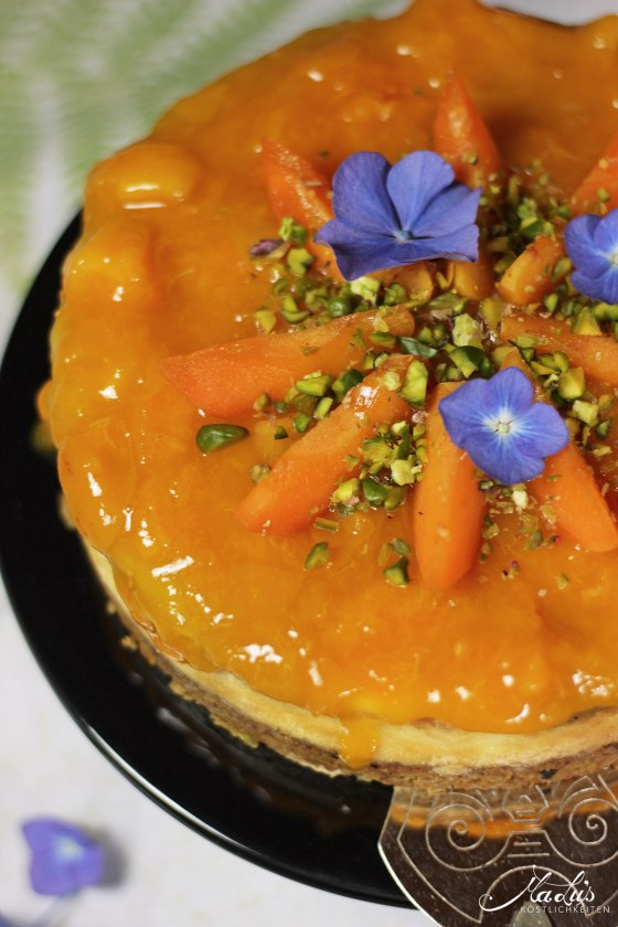 Pistaziencheesecake mit Aprikosen 9